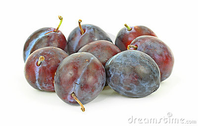 Group Small Italian Prune Plums