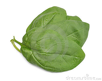 Group of spinach leaves