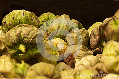 Group of Tomatillos