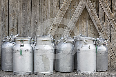 Group of vintage milk cans
