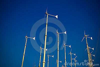 Group of wind turbine generator