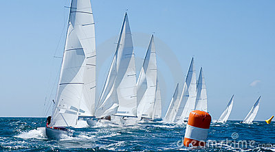 Group of yacht in regatta