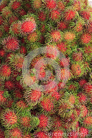 Groups of rambutan