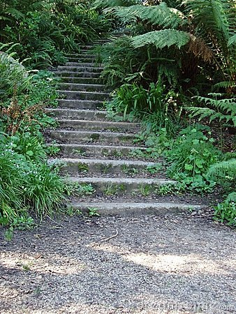 Grove Stairs