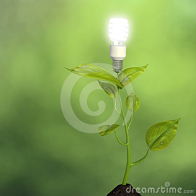 Growing green energy