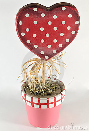 Growing heart plant, valentine day