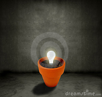 Growing Light bulb