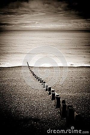 Groynes on Brighton beach, England