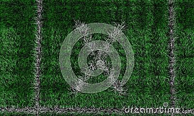 Gräsplan sätter in