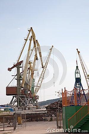 Grues dans un port