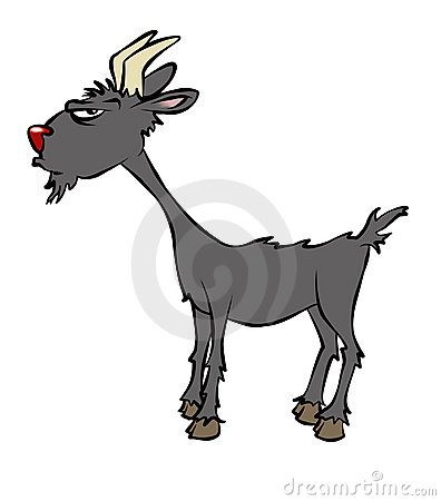 Free Gruff Billy Goat Royalty Free Stock Photos - 2701588