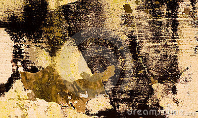 Grunge Background 27