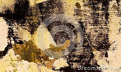 Grunge Background 27