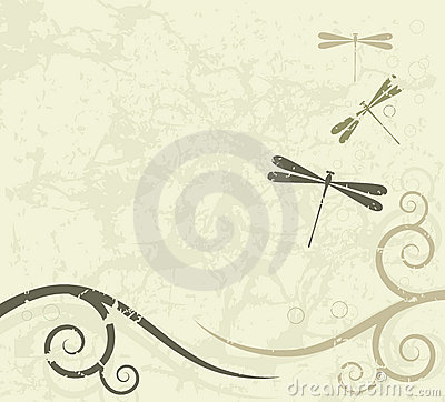 Grunge background with dragonflies