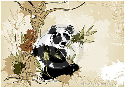 Grunge background with panda