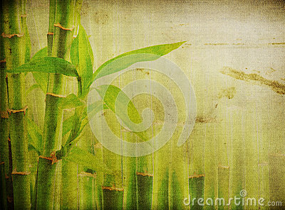 Grunge bamboo background
