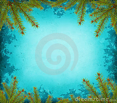 Grunge border with spruce
