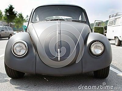 Grunge Bug