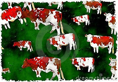 Grunge cows