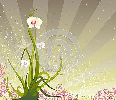 Grunge d orchidée