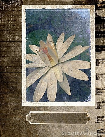 Grunge flower background Postcard