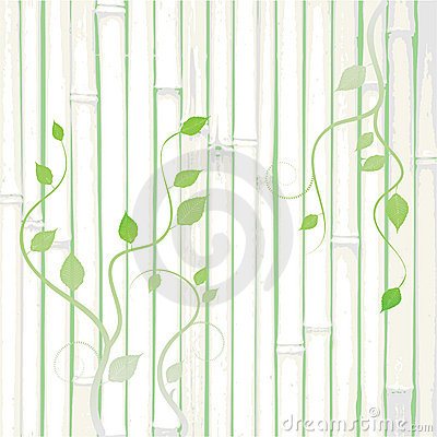Grunge frame, bamboo