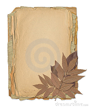 Grunge frame for old portrait or picture