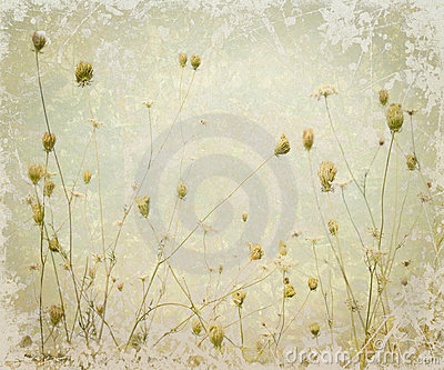 Grunge Pale Meadow Flower Art Background