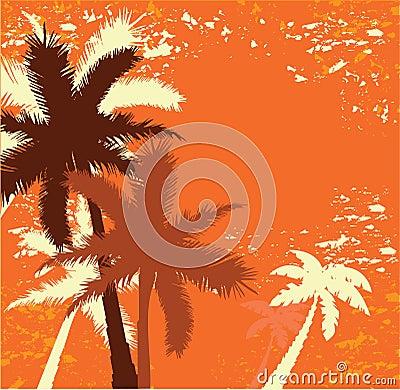 Grunge palms