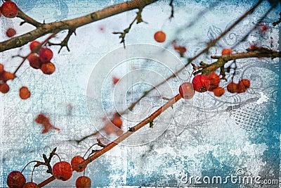 Grunge red berries on blue