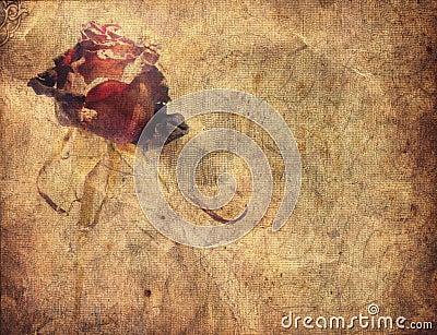 Grunge rose background