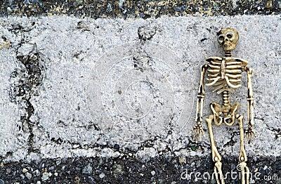 Grunge Skeleton Background