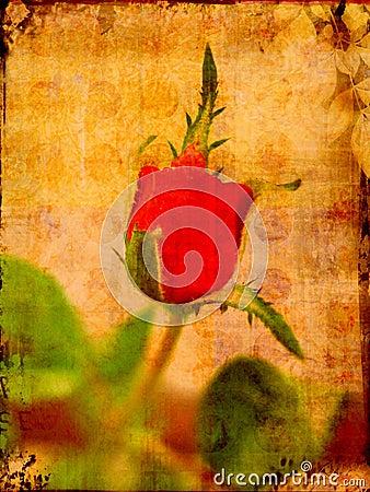 Grunge valentine rose