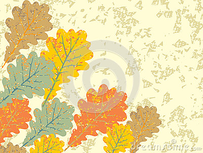 Grunge vintage oak leaves background