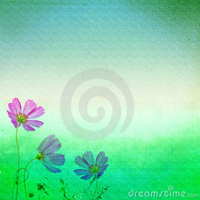 Free Grunge Wall And Flowers Royalty Free Stock Photo - 22927625
