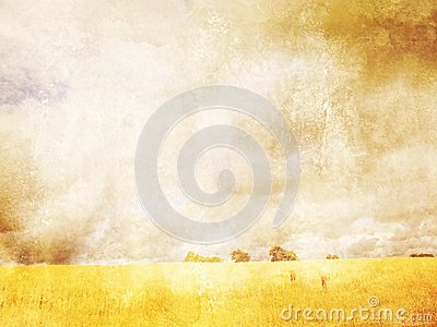 Grungy background with summer landscape