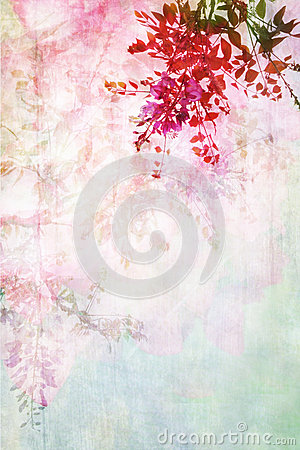 Free Grungy Background With Floral Border Royalty Free Stock Image - 35026346