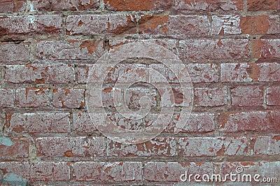 Grungy Brick Background