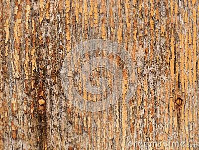 Grungy gammalt texturträ för bakgrund