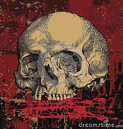 Grungy human skull