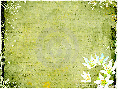 Grungy postcard with floral elements