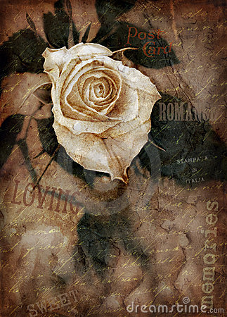 Free Grungy Rose Royalty Free Stock Images - 12396469