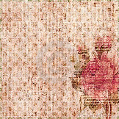 Grungy shabby spotted background with rose
