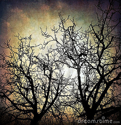 Free Grungy Trees Background Stock Images - 17675854