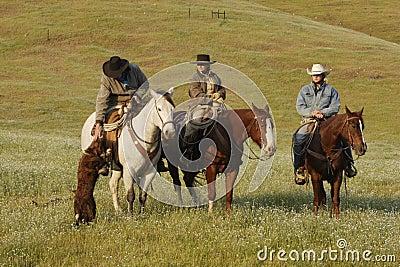 Grupo de cowboys com cão
