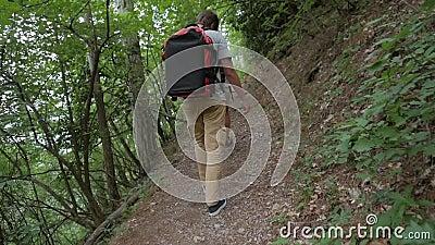 Grupo de jovens que caminham os amigos que andam em Forest Rear Back View de adolescentes Trekking no passeio na montanha com tro filme