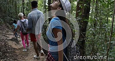 Gruppo di persone con gli zainhi che camminano attraverso il legno, turisti su trekking Forest Path Back Rear View di aumento stock footage