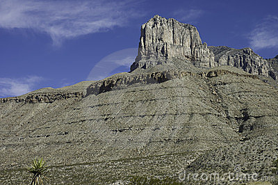 Guadalupe Mountains formation