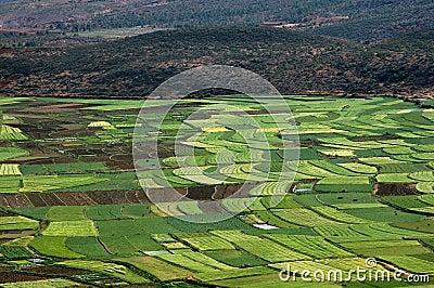 Guan Yin Xia, China: Verdant Farmlands