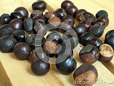 Guarana seed